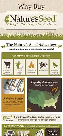 Horse Forage | Nature's Seed