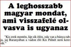A leghosszabb magyar mondat Wtf Funny, Funny Jokes, Funny Images, Funny Pictures, W Two Worlds, Bad Memes, Funny Pins, Mind Blown, Good To Know