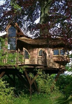treehouse is nicer than my house-house. A very upscale tree house that looks like a full house.A very upscale tree house that looks like a full house. Luxury Tree Houses, Cool Tree Houses, Beautiful Homes, Beautiful Places, House Beautiful, Simply Beautiful, Tree House Designs, Unusual Homes, In The Tree