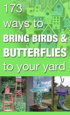 173 ways to bring birds & butterflies to your yard - lots of cool repurposing ideas!