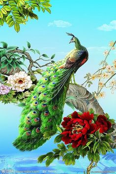 Cheap diy diamond, Buy Quality mosaic pictures directly from China peacock peacock Suppliers: Hot Sale! Peacock & flowers diy diamond Embroidery painting of home painting square drill home decoration mosaic picture Peacock Images, Peacock Pictures, Peacock Painting, Peacock Art, Male Peacock, White Peacock, Peacock Colors, Peacock Pattern, Art Et Illustration