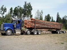 Kenworth W900L log truck