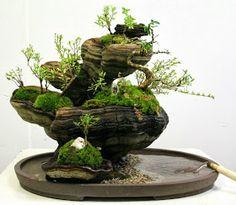Mini terrarium-like garden with moss. LOVE.