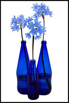 decor Lovely Home Decor Ideas Im Blue, Love Blue, Blue And White, Color Blue, Cobalt Glass, Cobalt Blue, Bouquet Champetre, Azul Indigo, Blue Bayou
