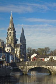 Ireland, County Cork, St Finbarr's Cathedral