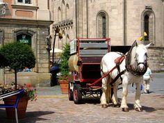 German horse drawn flower pot watering vehicle.