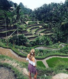 """9,050 Likes, 109 Comments - Backpacker (@backpackerstory) on Instagram: """" Ubud, Bali @simonekl """"Tegallalang Rice Terrace"""" - See more: Backpackerstory.org Contribute:…"""""""