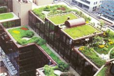 Just 10 reasons why Rooftop Gardens are a plus!    1.)Gives access to green environment  2.)Supports urban food production  3.) Teaches Self sustainability  4.)Removes CO2  5.)Insulates buildings (saves money)  6.)Increase of building value  7.)Creates jobs  8.)Tightens comunity  9.)Aids rain drainage  10.)Healthy and can be grown organically