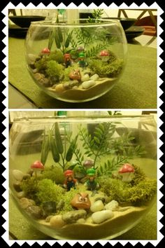 I made my first Mario Terrarium for my coffee table
