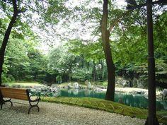 Yasukuni Shrine 2010-06-29 魚の庭