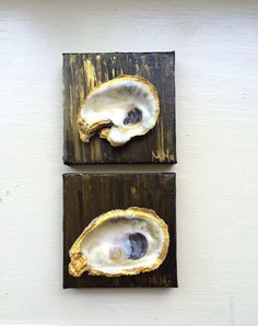 Two oyster shell paintings by ArtByMoMoWalker on Etsy Oyster Shell Crafts, Oyster Shells, Seashell Art, Seashell Crafts, Coastal Homes, Coastal Living, Everyday Holidays, Beach Paintings, Art Ideas