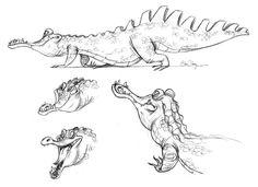 Elsachang.gators.jpg 1,600×1,164 pixels