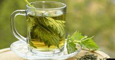 Tiene diversas ventajas para nuestra salud y bienestar. Si usted es una de las personas que ignora esta planta, lea este artículo. El poder curativo de esta planta parece ilimitado.