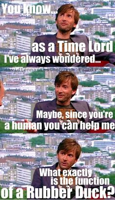 I may not have watched Doctor Who, nor am I a time lord, but I don't understand it's purpose other than being cute xD