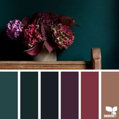 61 New Ideas apartment color schemes design seeds Apartment Color Schemes, Bedroom Color Schemes, Bedroom Colors, Colour Schemes, Interior Design Color Schemes, Colors For Bedrooms, Color Trends, Color Combinations, Jewel Tone Bedroom