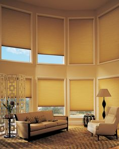 Duette® Architella® Honeycomb Shades provide energy-efficient style and savings. ♦ Hunter Douglas Window Treatments #LivingRoom