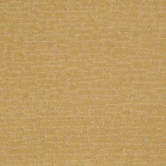 """Carpeting in style """"Stylish Element"""" - - Sundial - Flooring by Shaw Buy Carpet Online, Carpets Online, Shaw Carpet, Cheap Carpet Runners, Kitchen Carpet, Sundial, Best Carpet, Carpet Styles"""