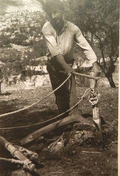 Σχετική εικόνα Old Photos, Vintage Photos, Farm Life, Greece, The Past, Memories, Farming, Archive, Pictures