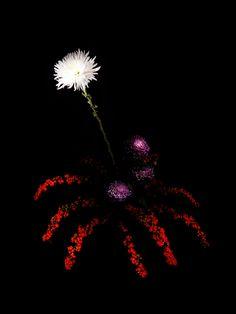 Flowerworks.