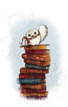 fondos iphone inspirados en Harry Potter, cadena de libros con una ova blanca con bufanda