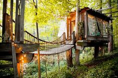 Woodsy treehouse with a bridge.