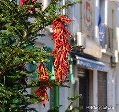 жгучий красный перец (peperoncino) на новогодней ёлке