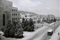Haifa Israel, Israel Palestine, Cool Photos, Past, Flower, World, Amazing, Places, Outdoor