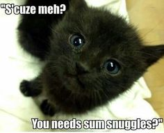 You Need Sum Snuggles?