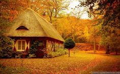 """Képtalálat a következőre: """"little house in the forest"""""""