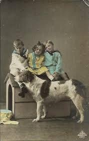 oude foto's van honden - Google zoeken