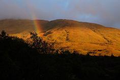 The stunning west coast of Scotland. #westisbest #appin #argyll #Scotland #munro #trees #Moss #nature #NaturePhotography #naturelovers #rainbow #autumn West Coast Scotland, Autumn Lights, Space Wedding, Scottish Highlands, Glamping, Nature Photography, Country Roads, Trees, Rainbow