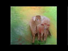 Weet je wat... de dieren zeggen? Youtube, Books, Painting, Art, Livros, Art Background, Libros, Painting Art, Kunst