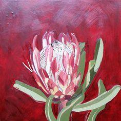 Tile: Protea Susannae Medium: Oil paint on canvas Size: x Diy Canvas Art, Acrylic Canvas, Flower Art, Art Flowers, Painting Flowers, Protea Art, Simple Art, Easy Art, Australian Native Flowers