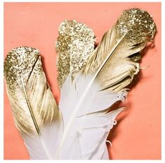 Gilded Feathers, book 1 ebook release date: October 31, 2013