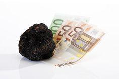 Schwarze Trüffel und Euroscheine