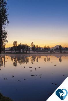 Seguramente lo primero que se te vino a la mente al escuchar el nombre de este lugar fueron colores, trajineras y flores, pero Xochimilco es más que eso: un lugar lleno de tradiciones, costumbres e historias ancestrales que le han otorgado la denominación de Patrimonio Cultural y Natural de la humanidad por la UNESCO, una razón más para visitarlo y descubrir cada rincón.