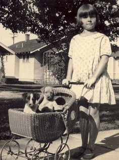 a little girl taking her puppies for a stroll in the carriage