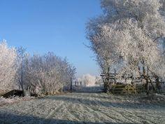 Brandemeerhuisje / vakantiewoning / Friesland / winter