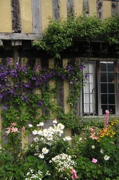 I saw so many gardens like this in England. They really have a talent & I think the climate must be ideal too.