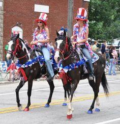 patriotic horse FOR PARADES - Google Search