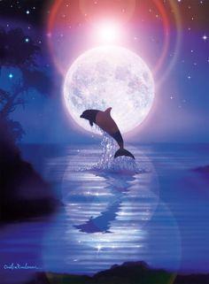 dolfijnen onder water - Google zoeken