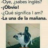 50 Trendy Memes En Espanol Disney Humor Mexicano 50 Trendy Memes In Spanish Disney Mexican Humor Memes Humor, Frases Humor, New Memes, Funny Jokes, Ecards Humor, Humor Mexicano, Funny Spanish Memes, Spanish Humor, Mexican Memes