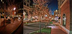 Piedmont Town Center - Enjoyed by corporate, retail and residential tenants alike, Piedmont Town Center has become a centerpiece of Charlotte's holiday season. Stellar design and superior construction combine to share a timeless tale befitting the city's proud heritage.