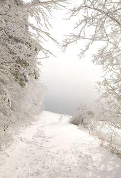 New snow