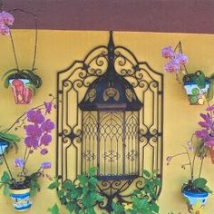 Spanish clay pots with phalenopsis orchids on a garage wall
