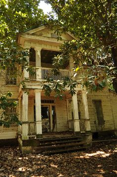 Roebuck Plantation Blueberry Farm in Sidon, MIssissippi ( the sad thing, most of the mansions look like this )