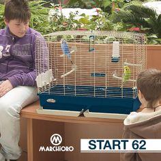 #START 62 Gabbie per uccelli  #marchioro #lineapet