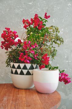 Gorgeous hand painted pots by Poppy. Made from fibreglass, lightweight. Suitable for indoor and outdoor usage. Made to order, allow two weeks.