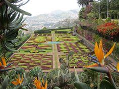 Artisans of Leisure @ArtisansLeisure - Slideshow - Garden, Madeira, Portugal