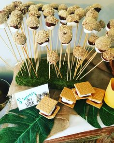 "S'mores on a stick.  ""A Wild One"" Where the Wild Things Are First Birthday Party"